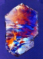 quartz section a polarized-light